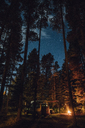 Canada, British Columbia, Kitwanga, Camping at night - GUSF00387