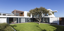 Sunny modern luxury home showcase exterior with yard and tree - HOXF02353