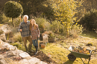 Portrait smiling couple gardening in sunny autumn garden - HOXF02686