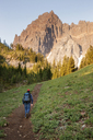 Rear view of hiker walking on pathway towards trees and mountains - CAVF00031