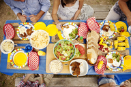 Overhead view of family having food at picnic table - CAVF00969