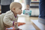 Baby girl crawling and drinking from sip cup - CAIF04929
