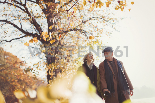 Affectionate senior couple holding hands walking in sunny autumn park - CAIF05346 - Paul Bradbury/Westend61