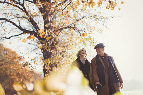 Affectionate senior couple holding hands walking in sunny autumn park - CAIF05346