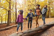 Young family holding hands walking on log in autumn woods - CAIF05436