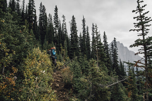 Canada, British Columbia, Yoho National Park, hikers on trail at Mount Burgess - GUSF00414