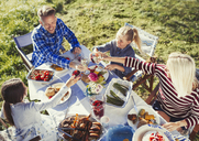 Family toasting wine and water glasses at sunny lunch patio table - CAIF06126