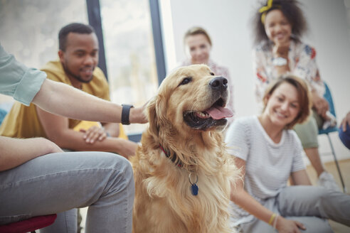 People petting dog in group therapy session - CAIF06845