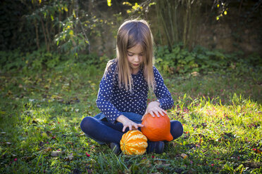 Little girl sitting on meadow in autumn playing with pumpkins - LVF06765