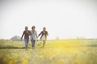 Multi-generation women walking in sunny meadow - CAIF07551