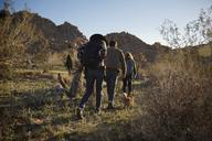 Rear view of friends walking on field against clear sky - CAVF02729