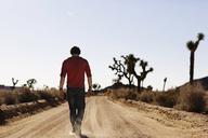 Rear view of man walking on dirt road - CAVF02738