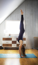 Side view of woman practicing hand stand at home - CAVF03609