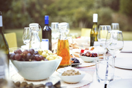 Set table at party outdoors - CAIF08477