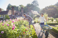 Father and son gardening in sunny flower garden - CAIF09143