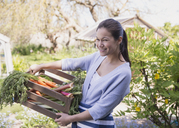 Portrait smiling woman holding crate of fresh harvested vegetables in garden - CAIF10361