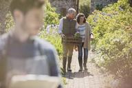 Couple shopping in sunny plant nursery garden - CAIF10367