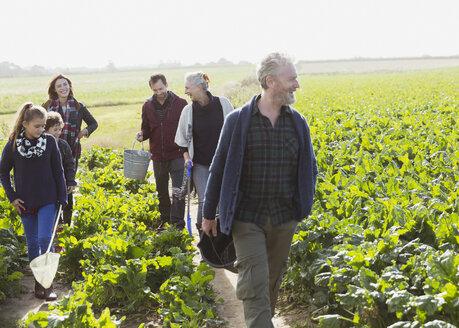 Multi-generation family walking in sunny vegetable garden - CAIF11516