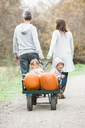 Parents pulling toddler children and pumpkins riding in wagon - CAIF11543