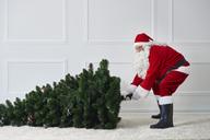 Santa Claus pulling Christmas tree - ABIF00100