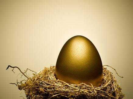 Golden egg on gold nest still life - CAIF12238
