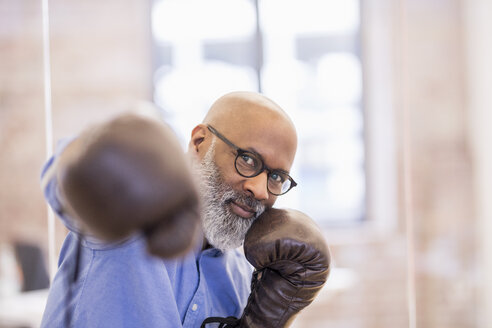 Portrait of businessman with boxing gloves - FMKF04935