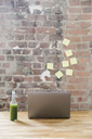 Glass bottle of green smoothie and laptop on wooden tabletop in a loft - FMKF04950
