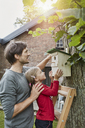 Father and daughter hanging up nest box in garden - RORF01210