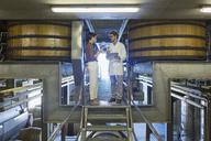 Vintners examining wine on platform in winery cellar - CAIF13642