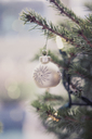 Silver ornament hanging on Christmas tree - CAIF14056