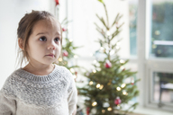 Wide-eyed girl looking up in front of Christmas tree - CAIF14059