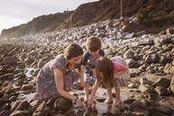 Happy family dipping finger in water at beach - CAVF07115