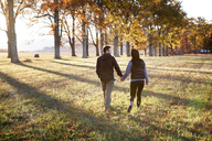 Rear view of couple holding hands while walking on field - CAVF07839