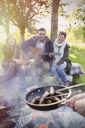 Friends with guitar cooking hot dogs over campfire - CAIF16049