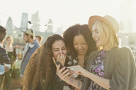 Young women laughing and texting with cell phone at rooftop party - CAIF16172