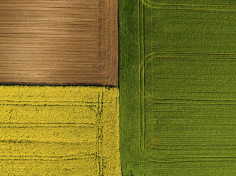 Serbia. Agricultural fields with yellow rape field, aerial view at summer - NOF00020