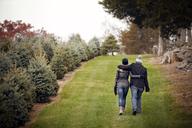 Rear view of couple walking on grassy field by Christmas tree farm - CAVF08321