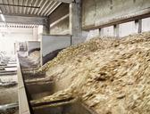 Wood chips falling in an conveyor belt - CVF00313