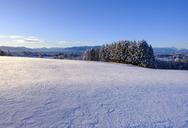 Germany, Bavaria, Upper Bavaria, Alpine foothills, Toelzer Land, View from Peretshofener Hoehe in winter - SIEF07748