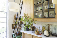 Ladder, plants and cabinets in rustic house - CAIF17536