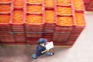 Worker with clipboard walking past tomato crates in food processing plant - CAIF17608