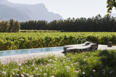 Lounge chairs by luxury lap pool among garden and vineyard - CAIF17947