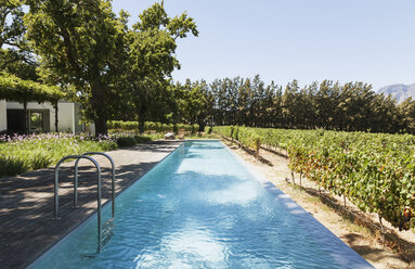 Luxury lap pool among garden and vineyards - CAIF17959