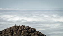 Spain, Canary Islands, Tenerife, person on summit in Teide National Park - STCF00403