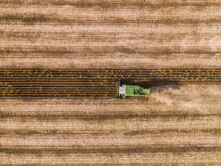 Serbia, Vojvodina, Combine harvester on a wheat, aerial view - NOF00024