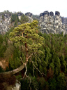 Germany, Saxony, Saxon Switzerland, Bastei region - JTF00949