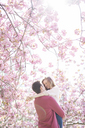 Couple hugging under tree with pink blossoms - CAIF19175