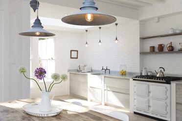 Luxury kitchen - CAIF19250