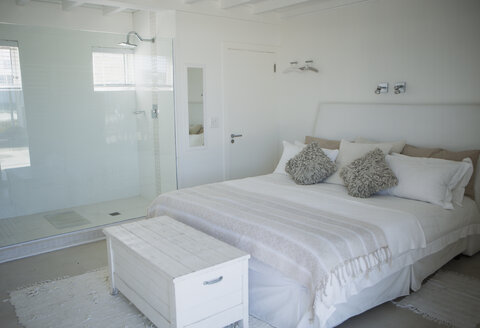 Bed, shower and trunk in modern bedroom - CAIF19355