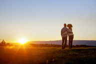 Rear view of couple standing on grass against clear sky during sunset - CAVF09563